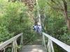 Existing Bridge Over Wetland