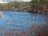 Twinings-Pond-Duck-Box