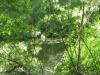 18Sunshine-on-Reubens-Pond
