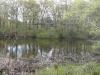 Reuben\'s Pond