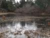 7coastal-freshwater-pond-with-ice