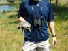 intern stephen o'grady with terrapin turtle