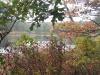 fall-photo-at-twinings