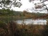 twinings-pond-overlook-2