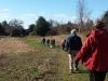 Walking the Meadows