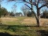 Meadow Views