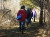 Interior Woodland Trail