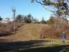 Mowed Fields