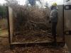Filling up the brush box with invasive vegetation