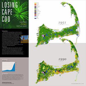 Loosing Cape Cod