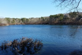 bakers pond
