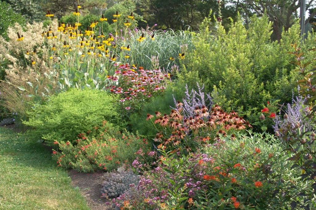 Lectures orleans conservation trust for Garden design with native plants
