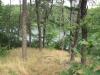 sarahs-pond