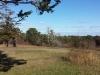 Pochet Island Meadow